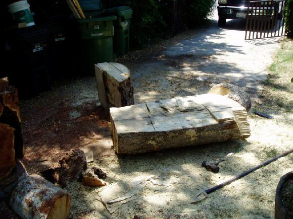 Once home, the problem is to filet the log and dress it for the lathe. I use a relatively small chainsaw and keep it very sharp. A larger saw will speed production. A very large bandsaw is ideal except for the initial cost which is still prohibitive.